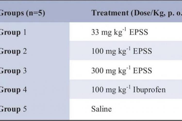 Experimental groups and treatment given