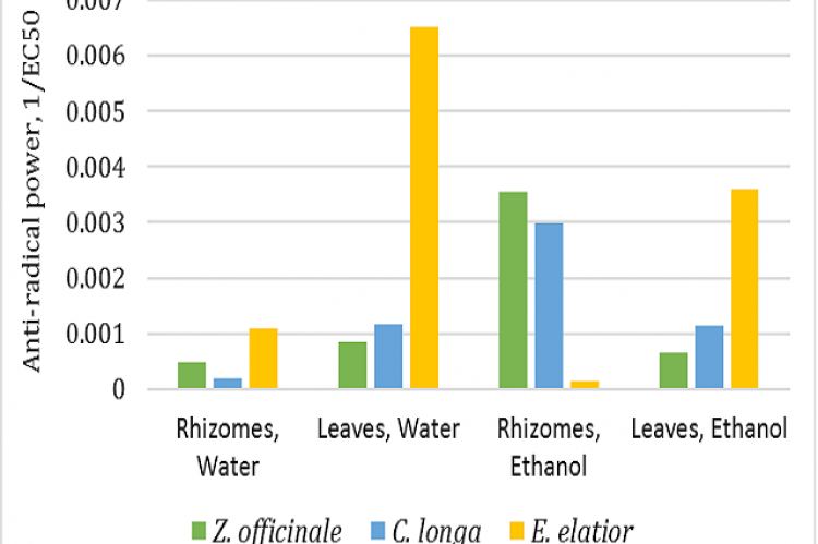 Antioxidant activity of the selected Zingiberaceae plants determined by DPPH Assay.