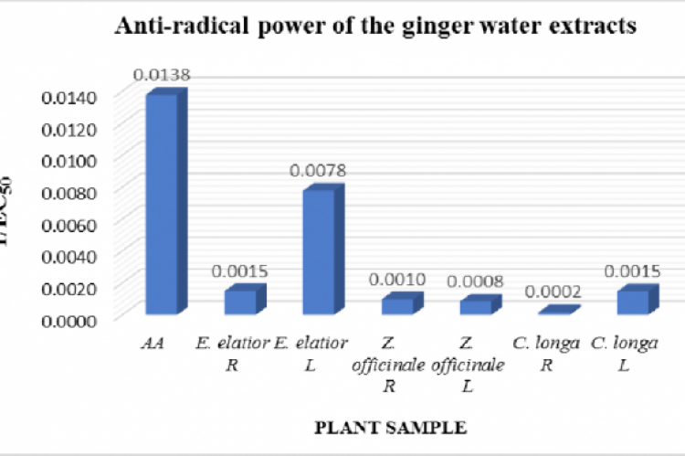 Anti-radical power (1/EC50) of the water extracts of the Zingiberaceae plants (R - Rhizomes; L - Leaves).