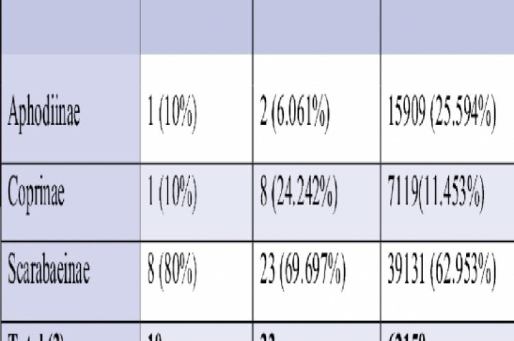 Total number, percentage of genus, species and individuals.