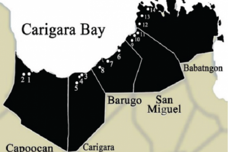 14 Sampling Stations at Carigara bay and its Freshwater Resources. Collection of Water Samples