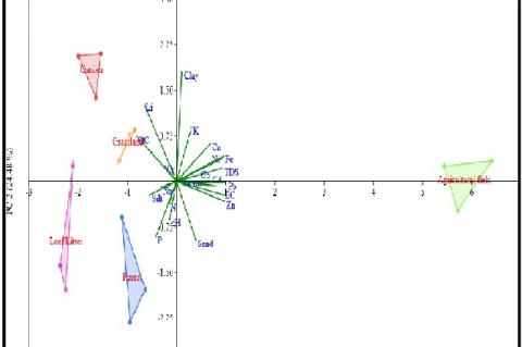 Loading plots for factor analysis showing different abiotic factors in five sampling sites