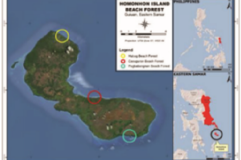 Map of Homonhon Island showing were the sampling done and its location on the Philippine archipelago and Eastern Samar