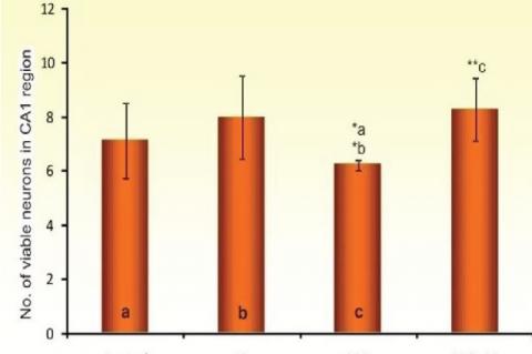 Viable neuron count in CA1 region Mean ±SE** (P<0.001),*(P<0.005)