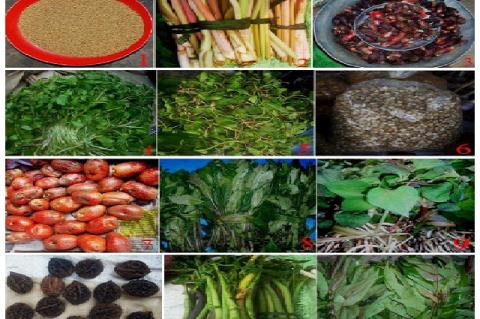 Some of the common underutilized crops sold in local markets of Kohima district, Nagaland