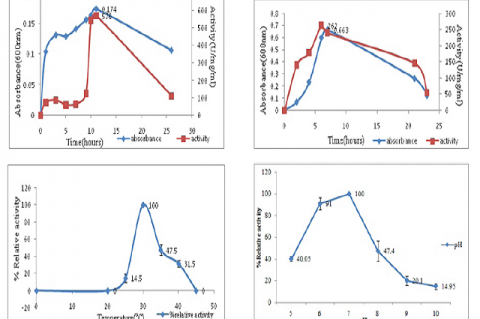 Biotransformation of Succinodinitrile into Corresponding High value Compounds using Nitrile Hydrolysing Enzyme from Microbacterium paraoxydans RS15